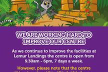 Lemur Landings Soft Play, Poole, United Kingdom