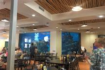 ABQ BioPark Aquarium, Albuquerque, United States