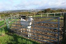Clyne Farm Centre, Swansea, United Kingdom