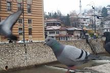 Vijećnica, Sarajevo, Bosnia and Herzegovina