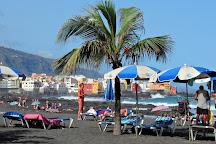 One Day In Tenerife, Santa Cruz de Tenerife, Spain