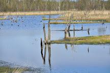 Naturschutzgebiet Wittmoor, Hamburg, Germany