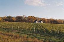 Arrowhead Spring Vineyards, Lockport, United States