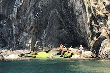 Tiburon Boat Services, Monterosso al Mare, Italy