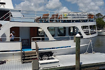 Captain Mark's Dolphin Watch Cruises, Hilton Head, United States