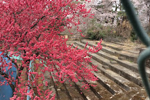 Kezoji Park, Isesaki, Japan