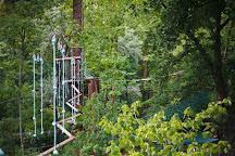 Trees Adventure - Glen Harrow Park, Belgrave, Australia