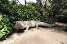 Zoologico de Cali, Cali, Colombia