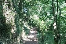 The Dylan Thomas Birthday Walk, Laugharne, United Kingdom