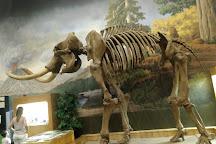 George S. Eccles Dinosaur Park, Ogden, United States