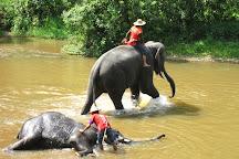 Maesa Elephant Camp, Mae Rim, Thailand