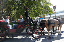 Heritage Horse Drawn Carriages, Hobart, Australia