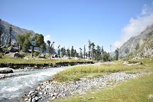 Govind Pashu Vihar National Park & Sanctuary, Supin Range, India