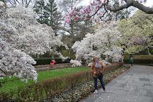 Brooklyn Botanic Garden, Brooklyn, United States