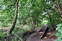 Ty Mawr Country Park, Wrexham, United Kingdom