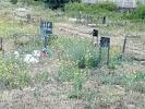 Кладбище Домашних Животных., проспект Соборности, дом 30 на фото Киева