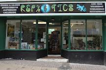 Repxotics, Shepton Mallet, United Kingdom