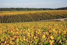 Rendez-Vous dans les Vignes, Chancay, France