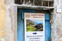 Buranco Agriturismo, Monterosso al Mare, Italy