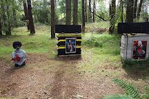 Bowhunter Archery, Nairn, United Kingdom