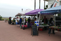 South Padre Island Farmer's Market, South Padre Island, United States