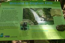 Bingham Falls, Stowe, United States