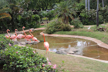 Honolulu Zoo, Honolulu, United States