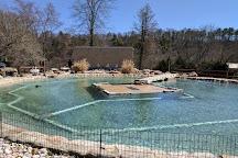 Lehigh Valley Zoo, Schnecksville, United States