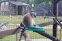 York's Wild Kingdom Zoo and Fun Park, York Beach, United States