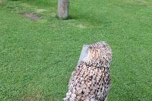 Walworth Castle Birds of Prey, Walworth, United Kingdom
