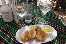 Manousakis Winery, Vatolakkos, Greece