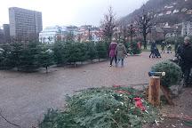 Lille Lungegaardsvannet, Bergen, Norway