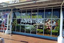 Sea Life Sydney Aquarium, Sydney, Australia