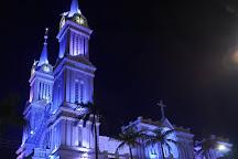 Cathedral of Sao Joao Batista, Rio Do Sul, Brazil