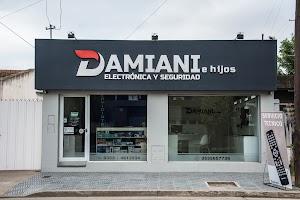 Damiani e hijos - Electronica y Seguridad