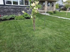 Unicutters Lawn Care