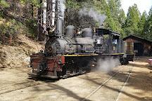 Yosemite Mountain Sugar Pine Railroad, Fish Camp, United States