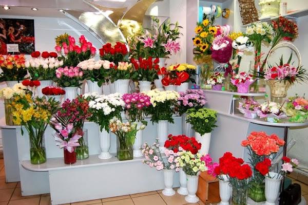Магазин цветов для вас донецк