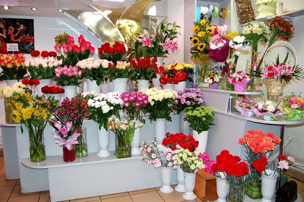 Белых, онлайн магазин цветов в омске