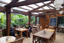 The Gallery & Cafe Helena Bay Hill, Whananaki, New Zealand
