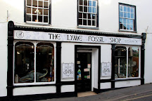 Lyme Regis Fossil Shop, Lyme Regis, United Kingdom