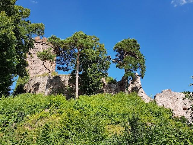Randonnee des 3 Chateaux de Ribeauville