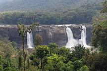 Expertise Travels, Kochi (Cochin), India