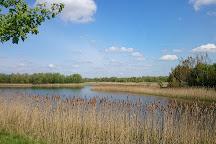 RSPB Fen Drayton Lakes, Swavesey, United Kingdom