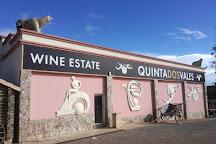 Quinta dos Vales Wine Estate, Estombar, Portugal