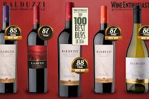 Balduzzi Vineyards & Winery, San Javier, Chile