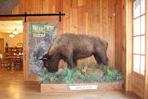 Dogwood Canyon Nature Park, Lampe, United States