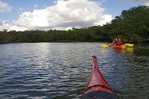 Naples Kayak Company, Naples, United States