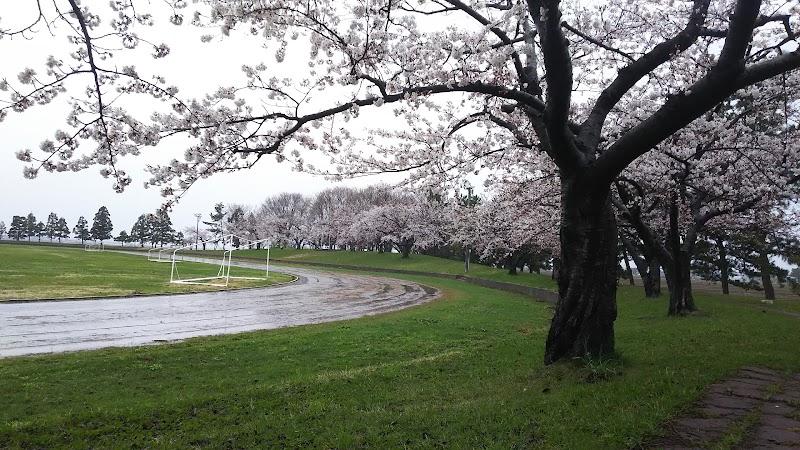 浪岡総合公園・浪岡体育館