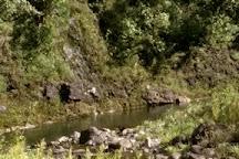 Manawaiopuna Falls (Jurassic Park Falls), Hanapepe, United States